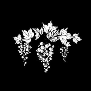 uva-illustrazione